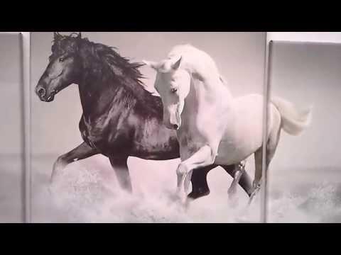 Модульная картина лошади 230