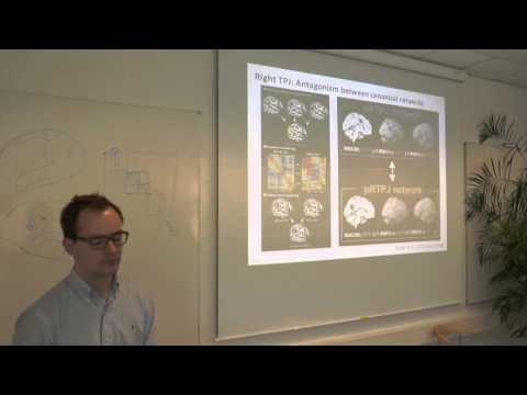 Functional Segregation of the Default Mode Network by Danilo Bzdok