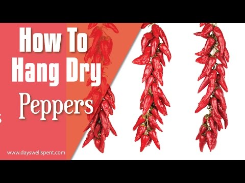 How to Sun Dry Chili Peppers - The Kitchen Professor