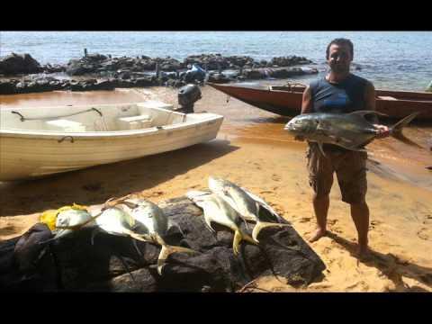 Explore Banana Island Sierra Leone