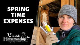 🔴 SPRING TIME EXPENSES (live-stream) // Versatile Horsemanship