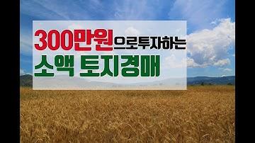 300만원으로 투자하는 소액 토지경매