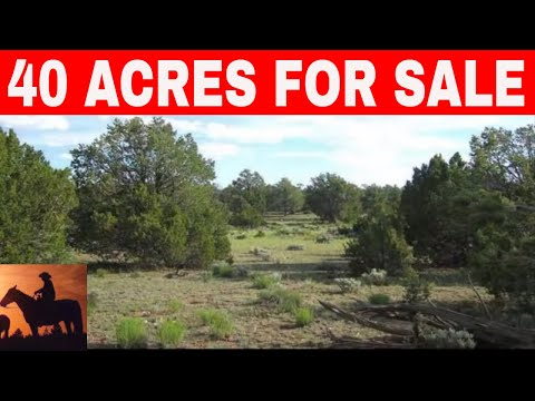 Arizona 40 Acres For Sale Owner Financing