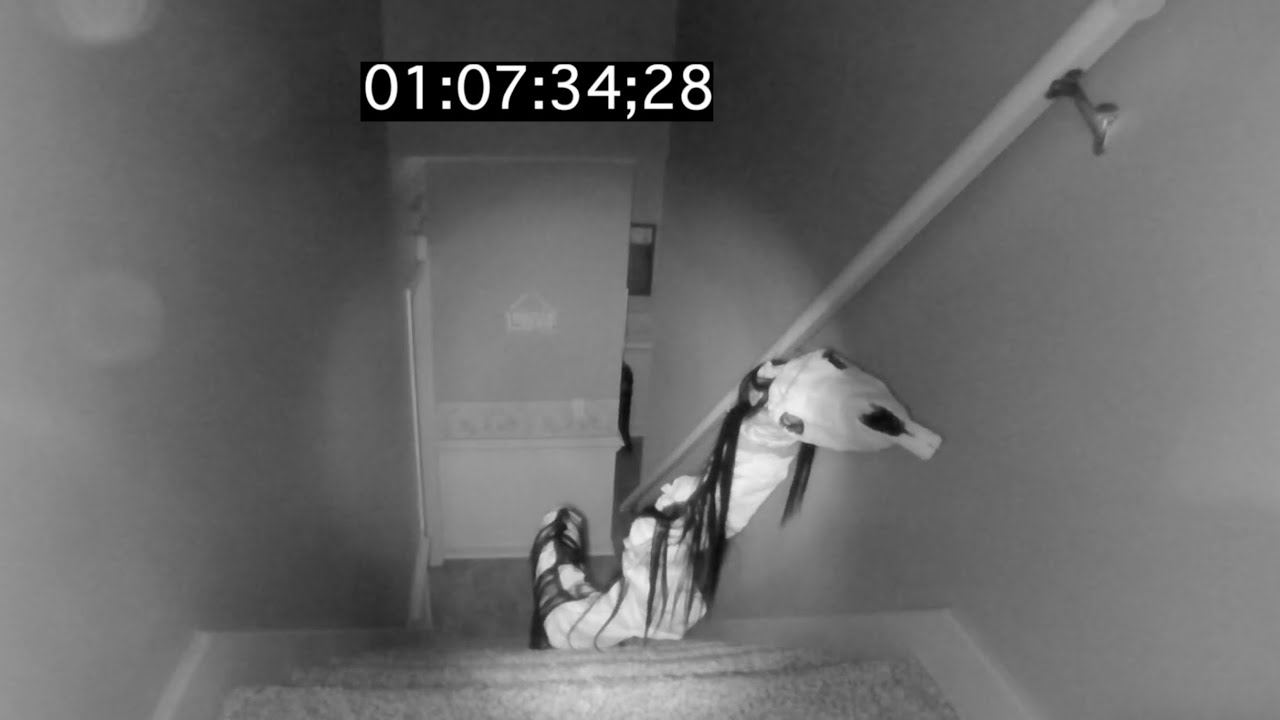 Long Horse Caught on Security Camera...