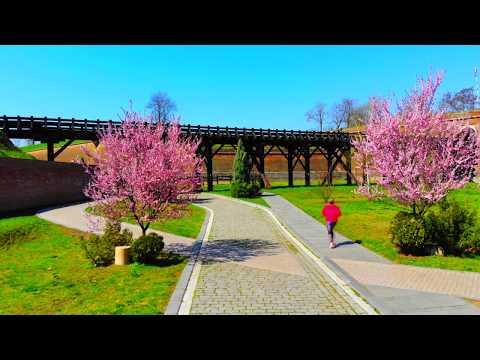 Video| Cetatea Alba