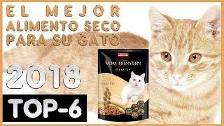 El mejor 🔥 Alimento Seco para su Gato 😸 TOP-6 🔥