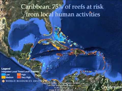 Caribbean -- Google Earth Tour of Reefs at Risk