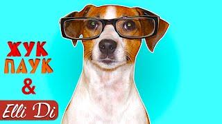 ТОП 20 ФАКТОВ О СОБАКАХ И ЩЕНКАХ | ИНТЕРЕСНЫЕ ФАКТЫ | Жук Паук и Elli Di Собаки