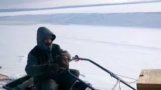 Бурлак М 15 к. с. На риболовлі.