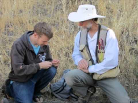 UC Davis CA&ES Major: Wildlife, Fish, And Conservation Biology