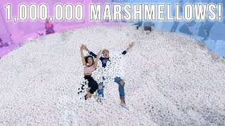1,000,000 MARSHMALLOWS IN POOL! *REAL LIFE CANDYLAND!*
