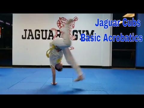 Cubs basic acrobatics Capoeira