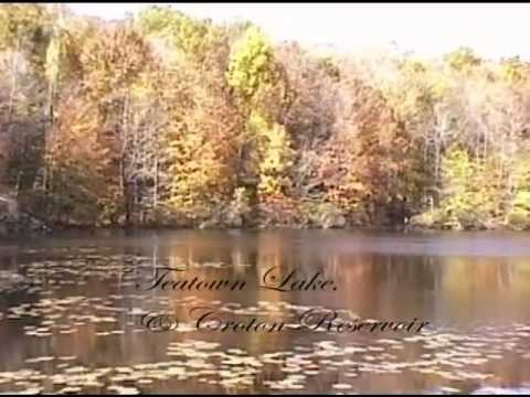 Scenic Drive: Autumn in Westchester County, suburban New York