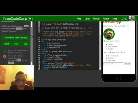 Add A Submit Button To A Form, FreeCodeCamp Review Html & Css, Lesson 30