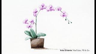 Cómo dibujar una orquídea con tinta - Narrado