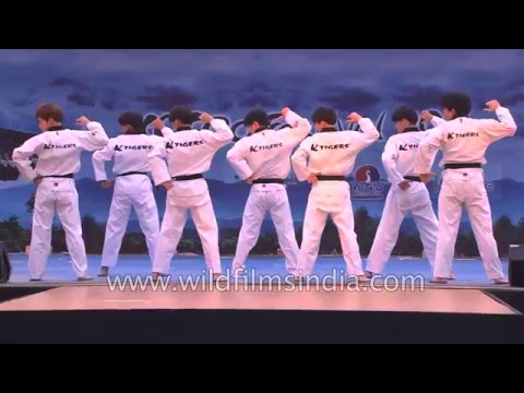 Taekwondo performance by K-Tigers from Korea