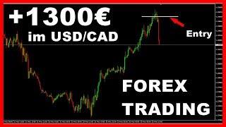 1300€ mit Forex Trading Strategie im USD/CAD für Anfänger (Deutsch)