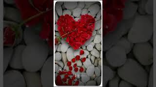 Love paththi sollenda anbunna athu Nee thanda kanneer Na / whatsapp status song full screen male ver