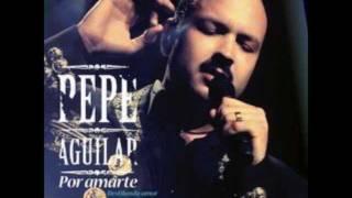 Y Ahora Olvidame Pepe Aguilar