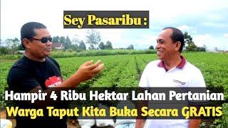 Wow, Sektor Pertanian Sumbang 46 Persen Produk Domestik Regional Bruto TAPANULI UTARA #LumbungPangan