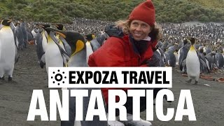 10 Ultimate guide to learn how to Visit Antarctica