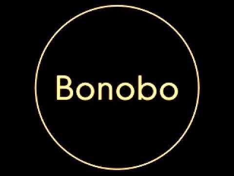 Bonobo Kerala