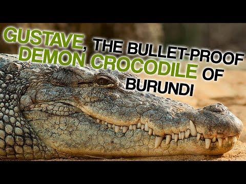 The Bulletproof Demon Crocodile Of Burundi (Corporal Ben Dover)