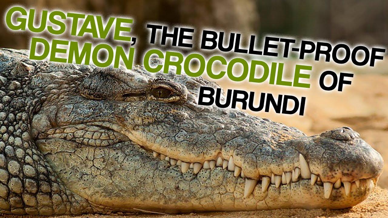 The Bulletproof Demon Crocodile Of Burundi Corporal Ben Dover Youtube