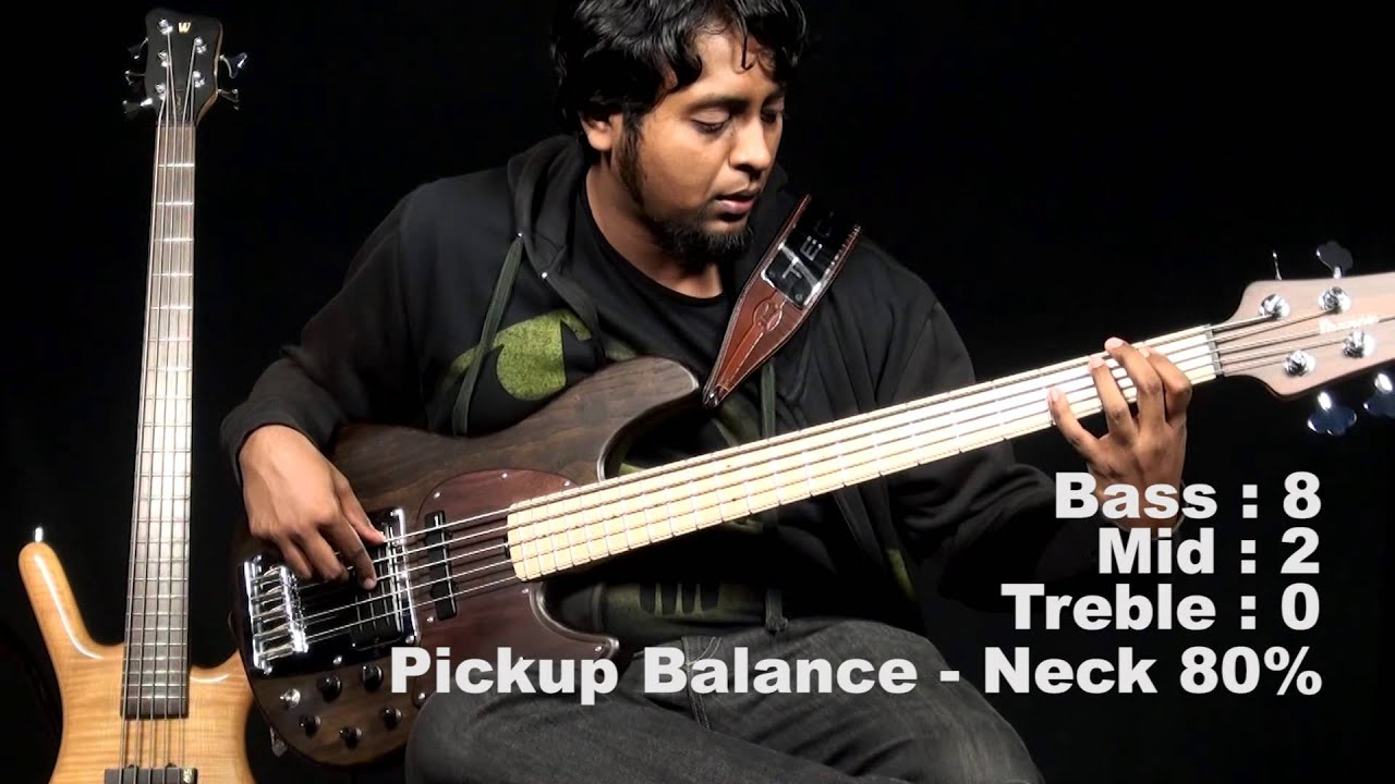 ibanez premium atk805e in depth review by naresh nathan slain
