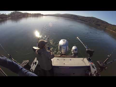 Lake Berryessa - Trout - 1/5/2020