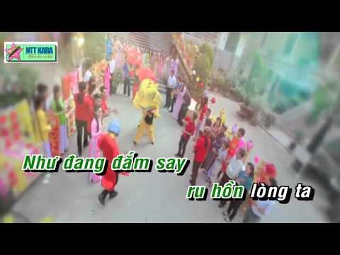 [Karaoke] Cánh Bướm Vườn Xuân Remix - Lương Viết Quang (full beat)