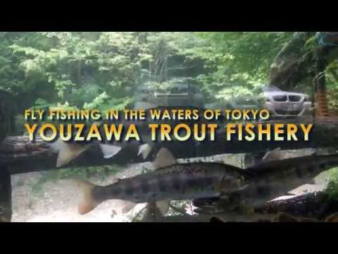 Fly Fishing in Japan: Youzawa Trout Stream, Tokyo