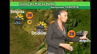 видео Погода в Танзании