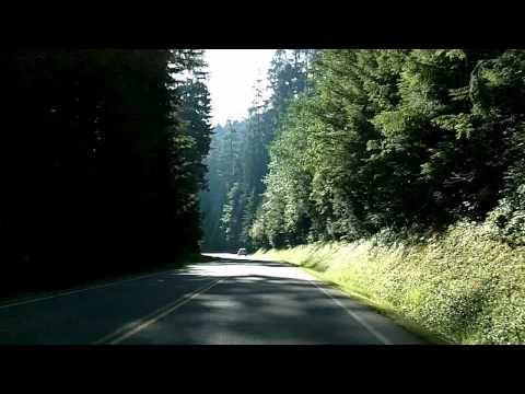 Port Angeles to Hurricane Ridge, Olympic National Park Time Lapse Drive