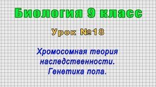 Биология 9 класс (Урок№18 - Хромосомная теория наследственности. Генетика пола.)