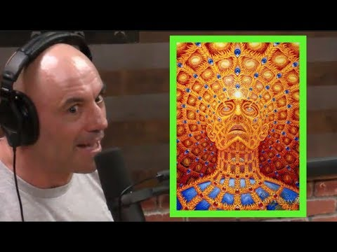 That's Crazy, Man  Have You Ever Done DMT? | Know Your Meme