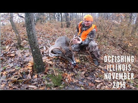 Lllinois Whitetail Deer Hunting / Recovery