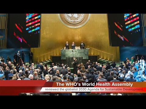 KTF News - The Vatican and Global health
