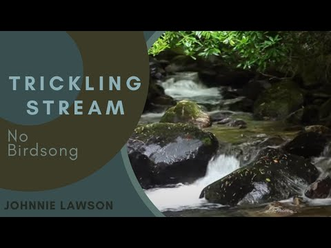 Nature Meditation for Insomnia and Relaxing by Johnnie Lawson-Nature Sounds-8hr. W/O Birdsong