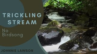 Nature Meditation for Insomnia and Relaxing by Johnnie Lawson-Nature Sounds-8hr Birdsong