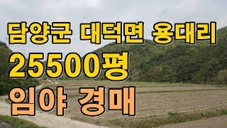 부동산경매 -전남 담양군 대덕면 용대리 임야