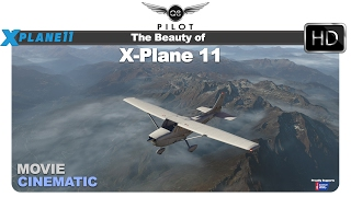 The Beauty of X Plane 11 | Flight Around the X-Plane World
