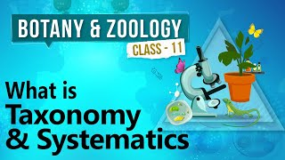 What is Taxonomy and Systematics - Diversity in Organisms - Biology Class 11