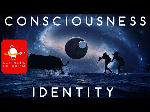 Consciousness and Identity