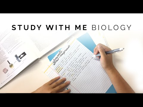 How I Take Biology Notes 🌿 Study With Me