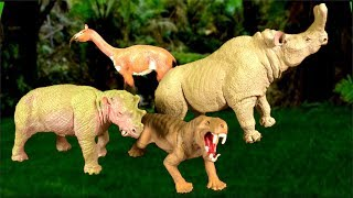 NEW Learn Prehistoric Mammals | Wild animals Prehistoric Animals | Toy Collection Educational video