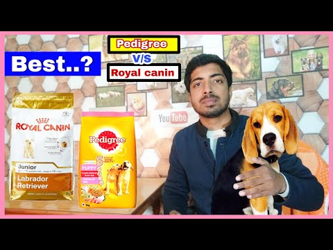 Pedigree V/s Royal Canin    Best Dog Food 🍲 With 100% Proof.