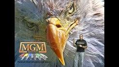 Bronze  Vinyl Windows MGM Industries