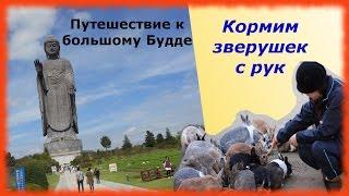 видео Описание статуи «Будда Весеннего Храма»