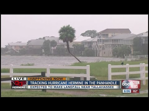 Tracking Hurricane Hermine in the Panhandle